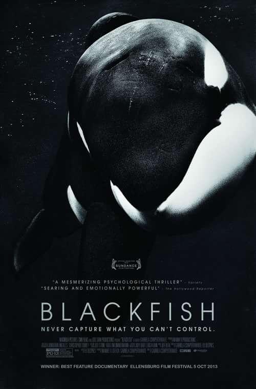 Work  by Trend Prive Magazine, Blackfish, Jeffrey Ventre